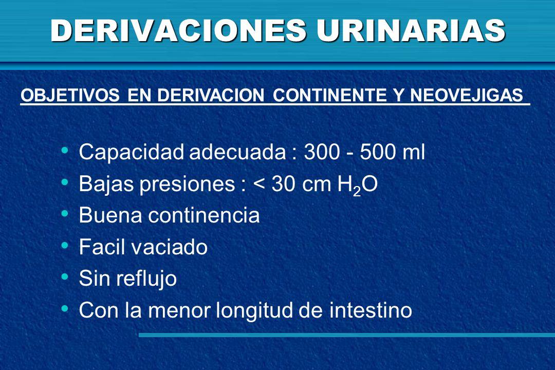 DERIVACIONES URINARIAS