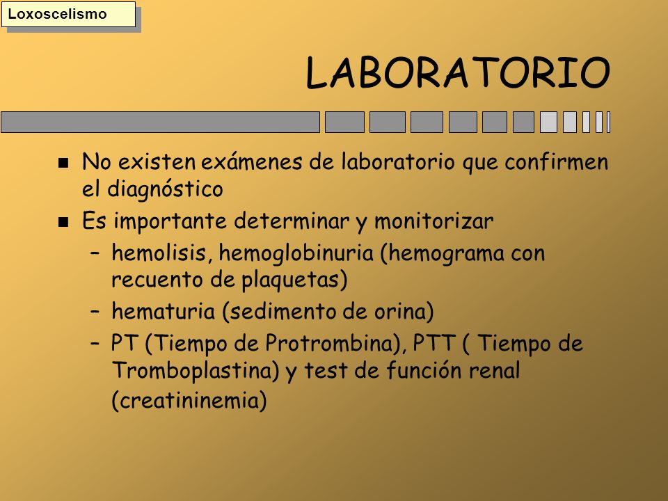 Loxoscelismo LABORATORIO. No existen exámenes de laboratorio que confirmen el diagnóstico. Es importante determinar y monitorizar.