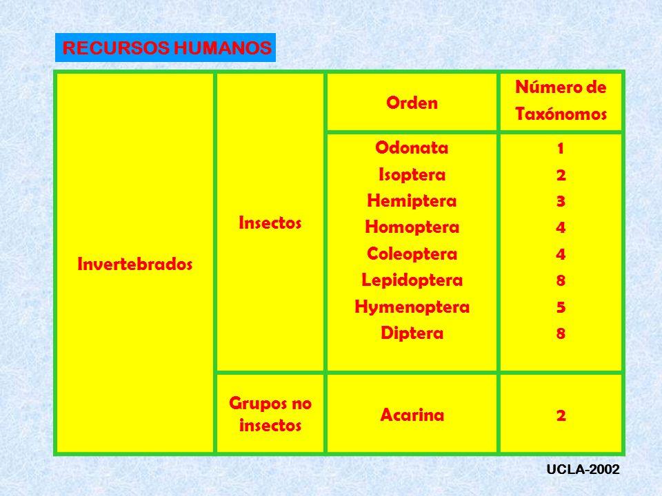 RECURSOS HUMANOS Invertebrados Insectos Orden Número de Taxónomos