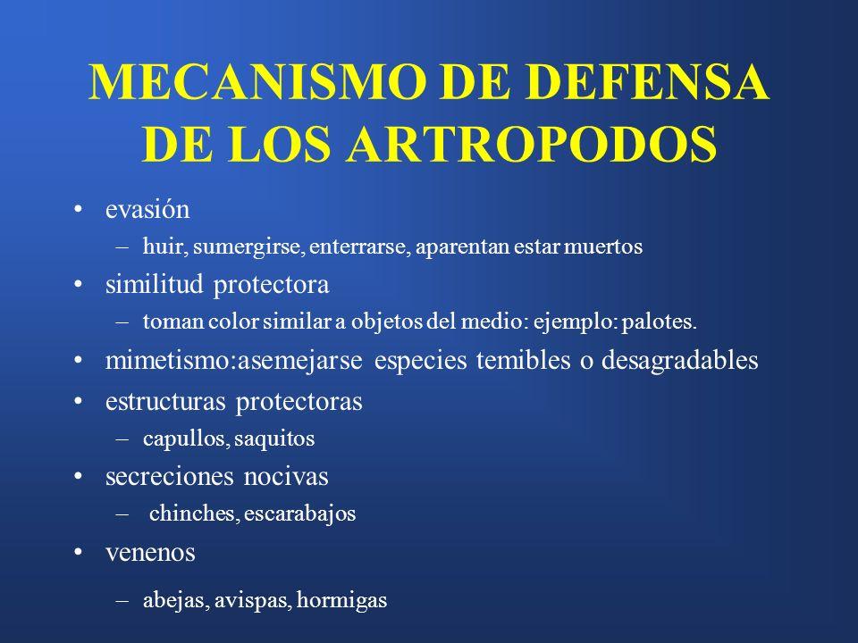 MECANISMO DE DEFENSA DE LOS ARTROPODOS