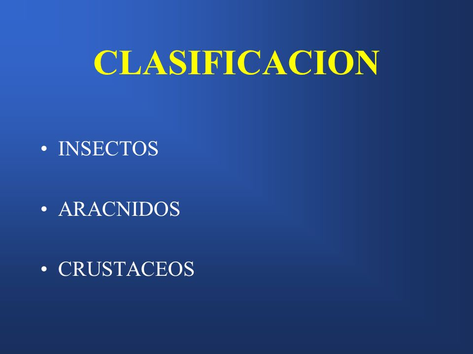 CLASIFICACION INSECTOS ARACNIDOS CRUSTACEOS