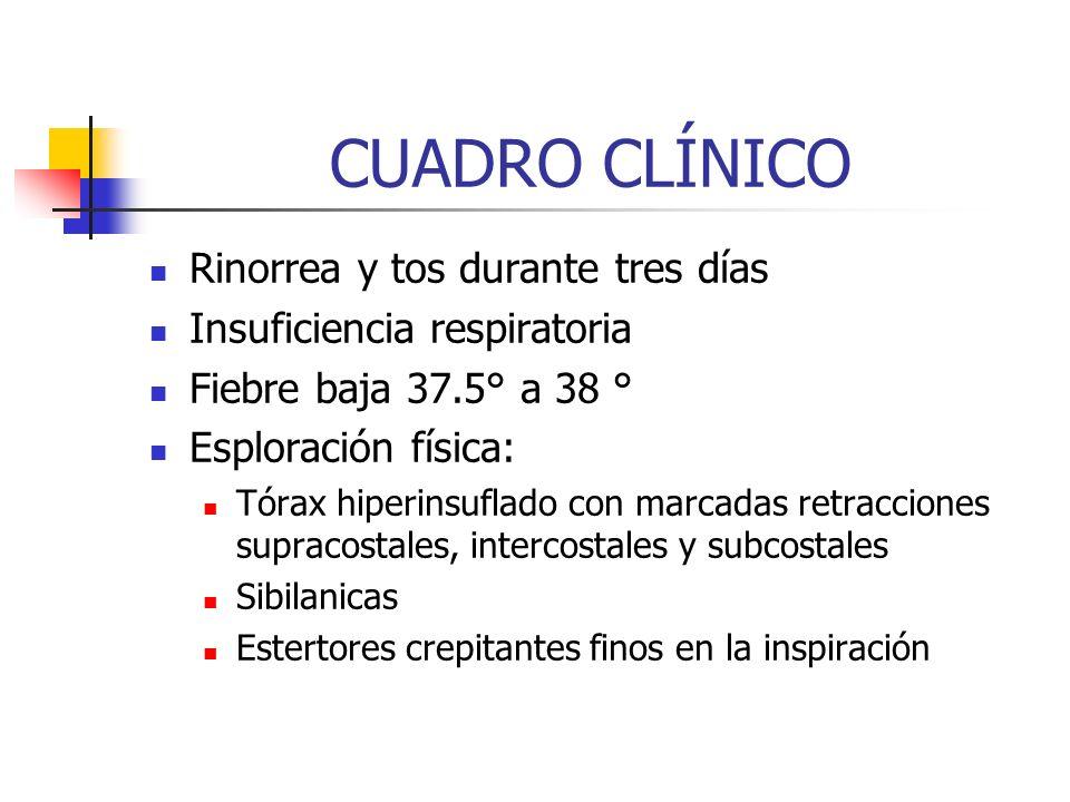 CUADRO CLÍNICO Rinorrea y tos durante tres días