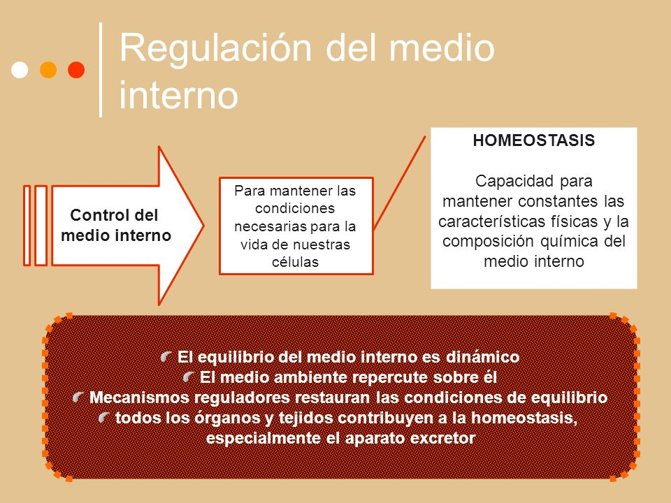 Regulación del medio interno