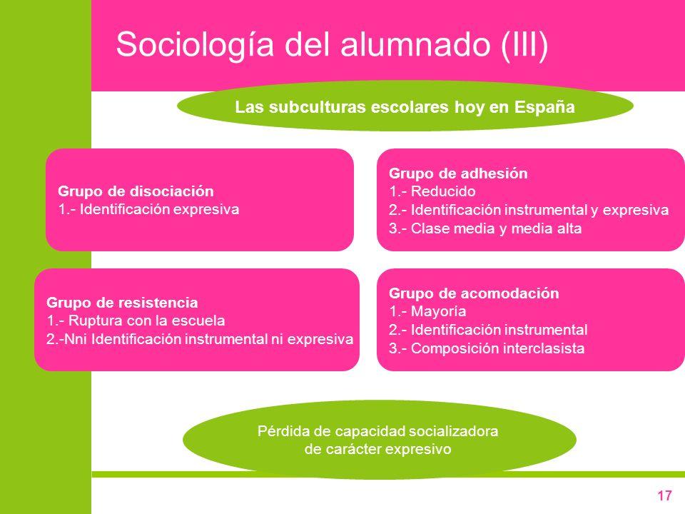 Sociología del alumnado (III)