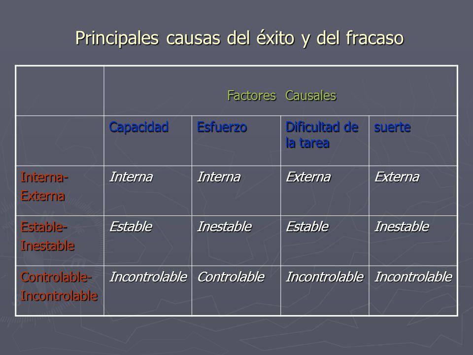 Principales causas del éxito y del fracaso
