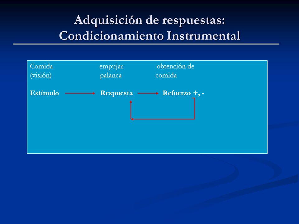Adquisición de respuestas: Condicionamiento Instrumental