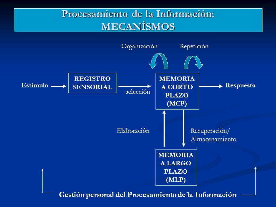 Procesamiento de la Información: MECANÍSMOS
