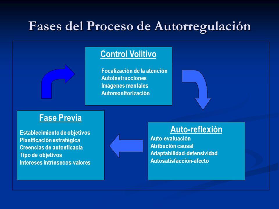 Fases del Proceso de Autorregulación