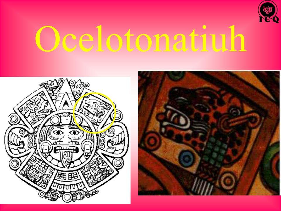 Ocelotonatiuh