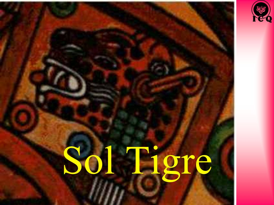 Sol Tigre