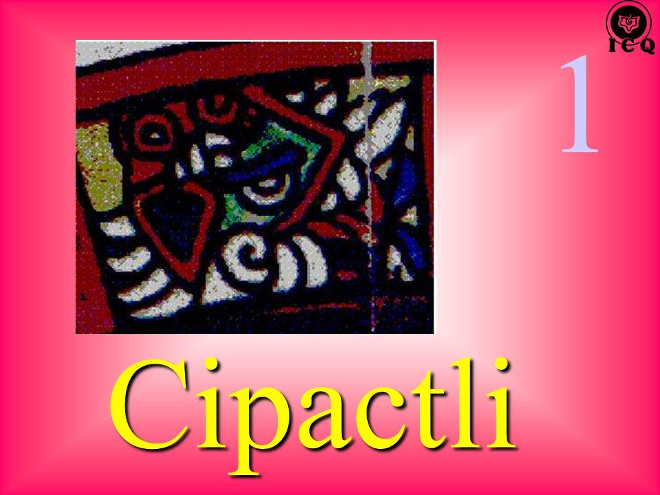 1 Cipactli