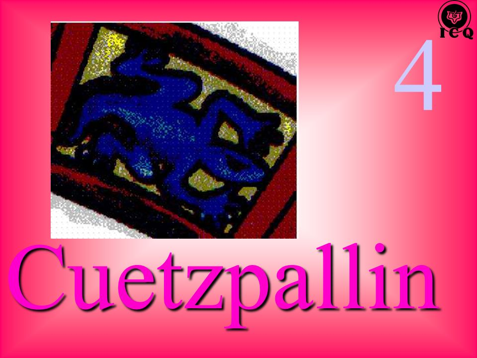 4 Cuetzpallin
