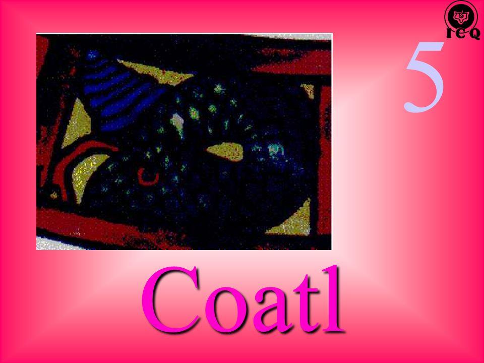 5 Coatl