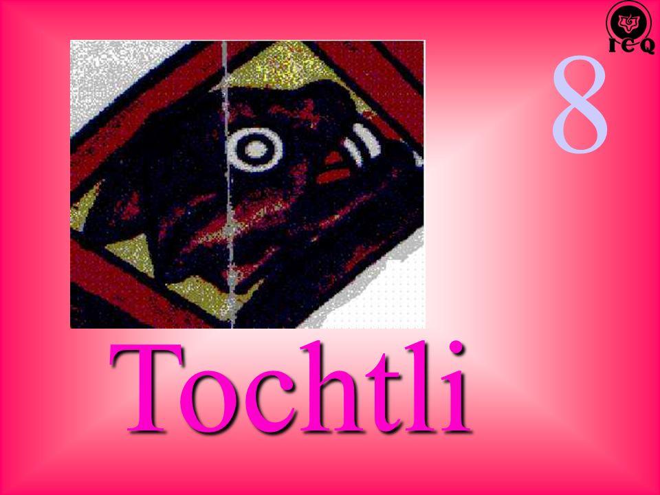 8 Tochtli