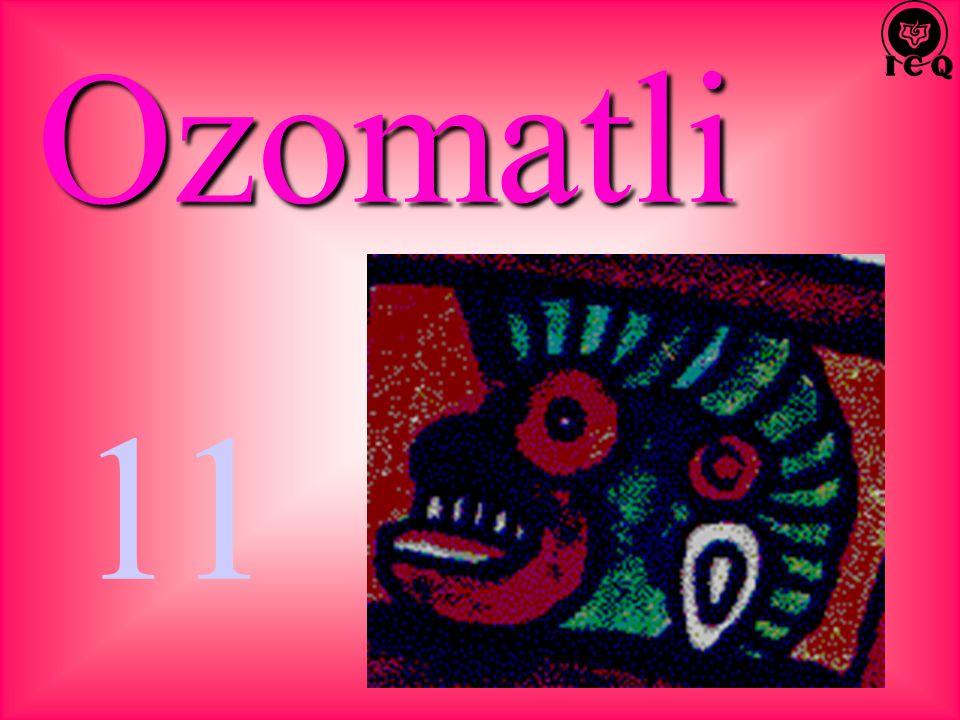 Ozomatli 11