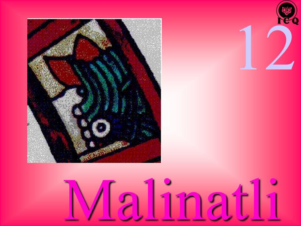 12 Malinatli