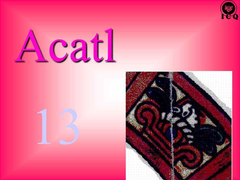 Acatl 13