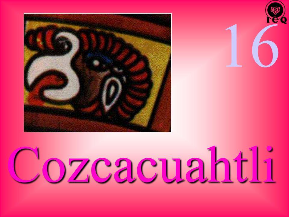 16 Cozcacuahtli
