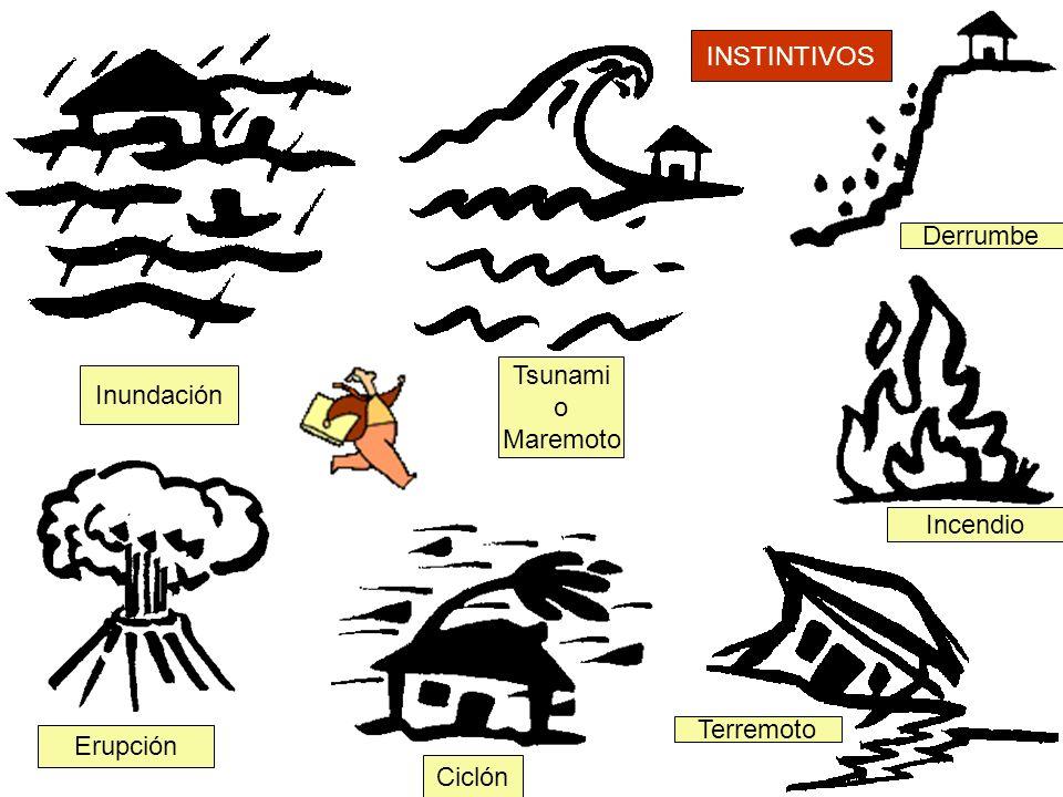 INSTINTIVOS Derrumbe Tsunami o Maremoto Inundación Incendio Terremoto Erupción Ciclón