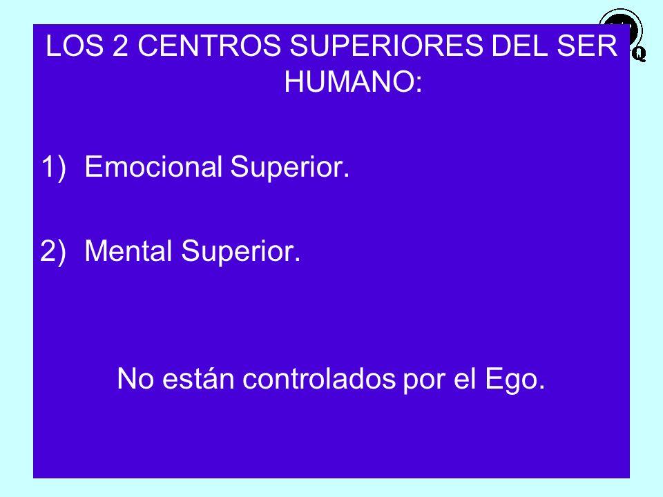 LOS 2 CENTROS SUPERIORES DEL SER HUMANO: