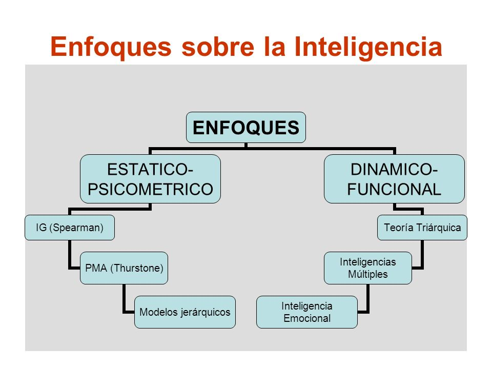Enfoques sobre la Inteligencia