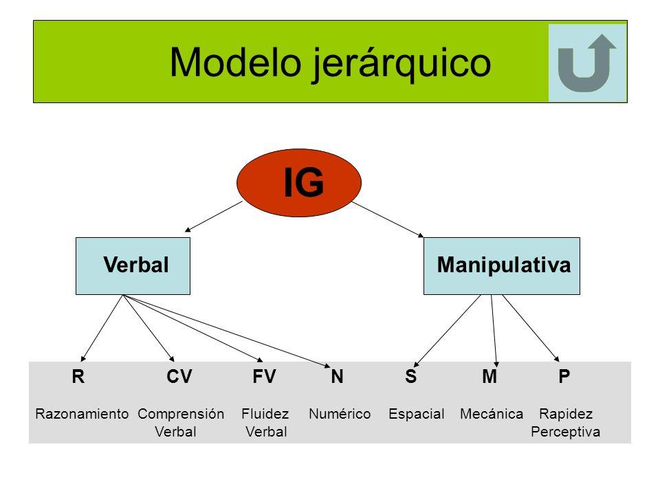 Modelo jerárquico IG Verbal Manipulativa R CV FV N S M P