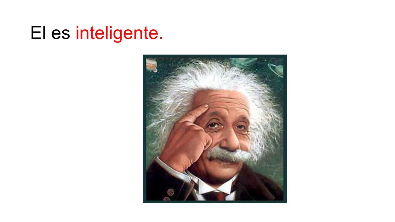 El es inteligente.