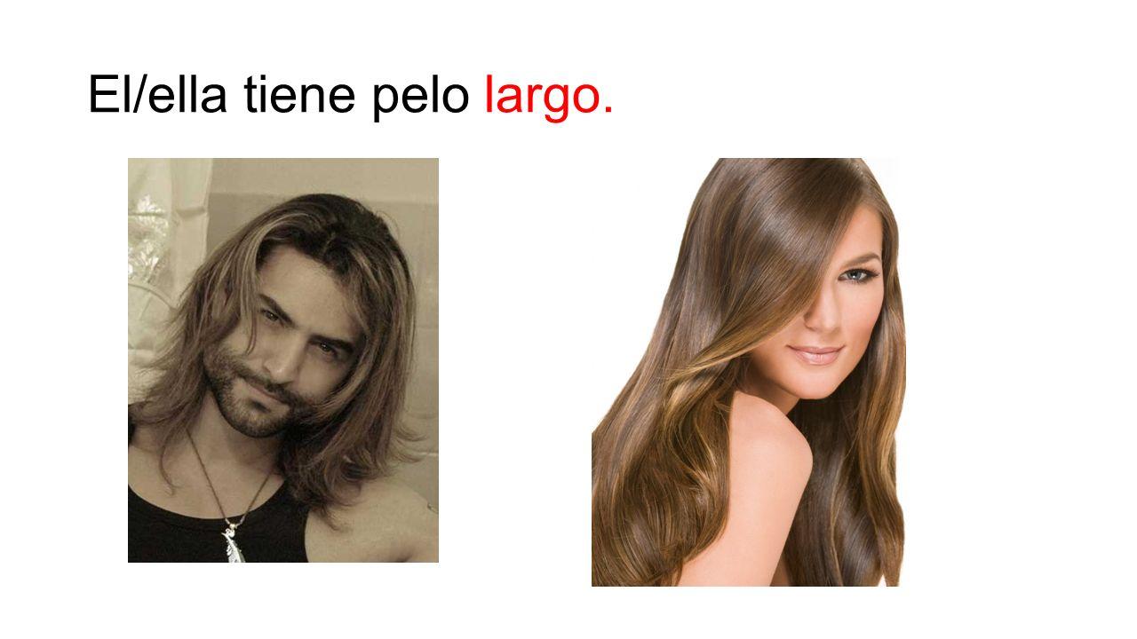 El/ella tiene pelo largo.