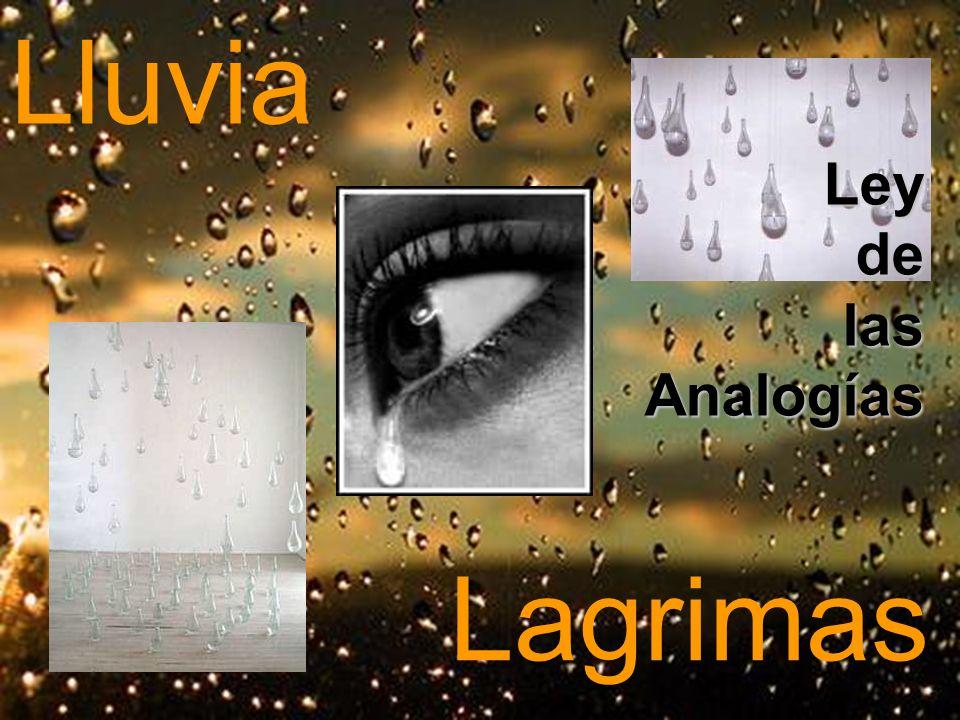 Lluvia Ley de las Analogías Lagrimas