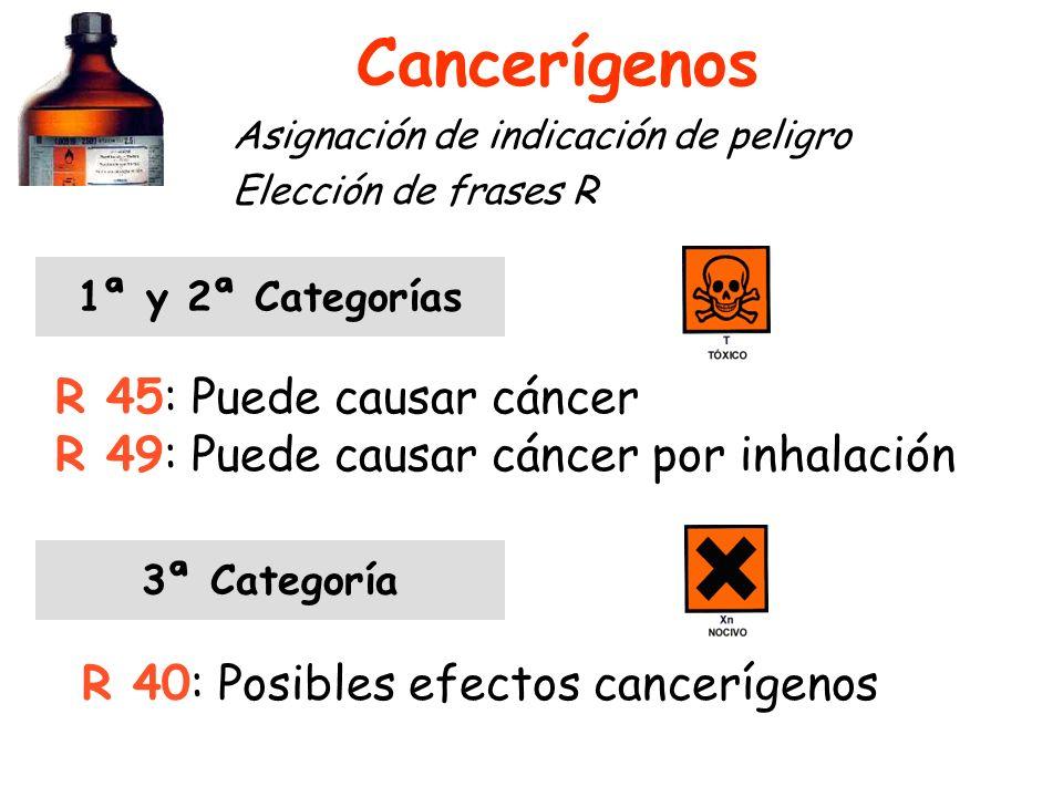Cancerígenos R 45: Puede causar cáncer