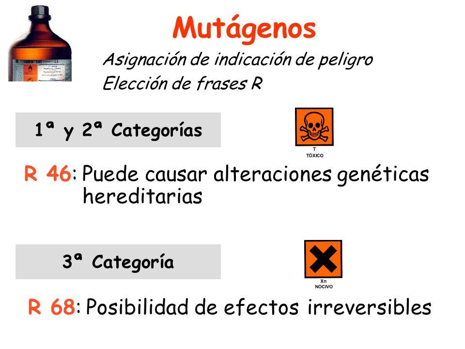 Mutágenos R 46: Puede causar alteraciones genéticas hereditarias