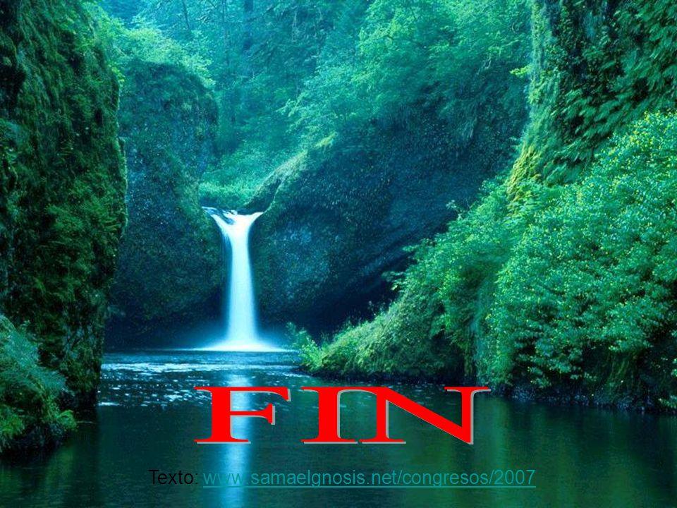 FIN Texto: www.samaelgnosis.net/congresos/2007