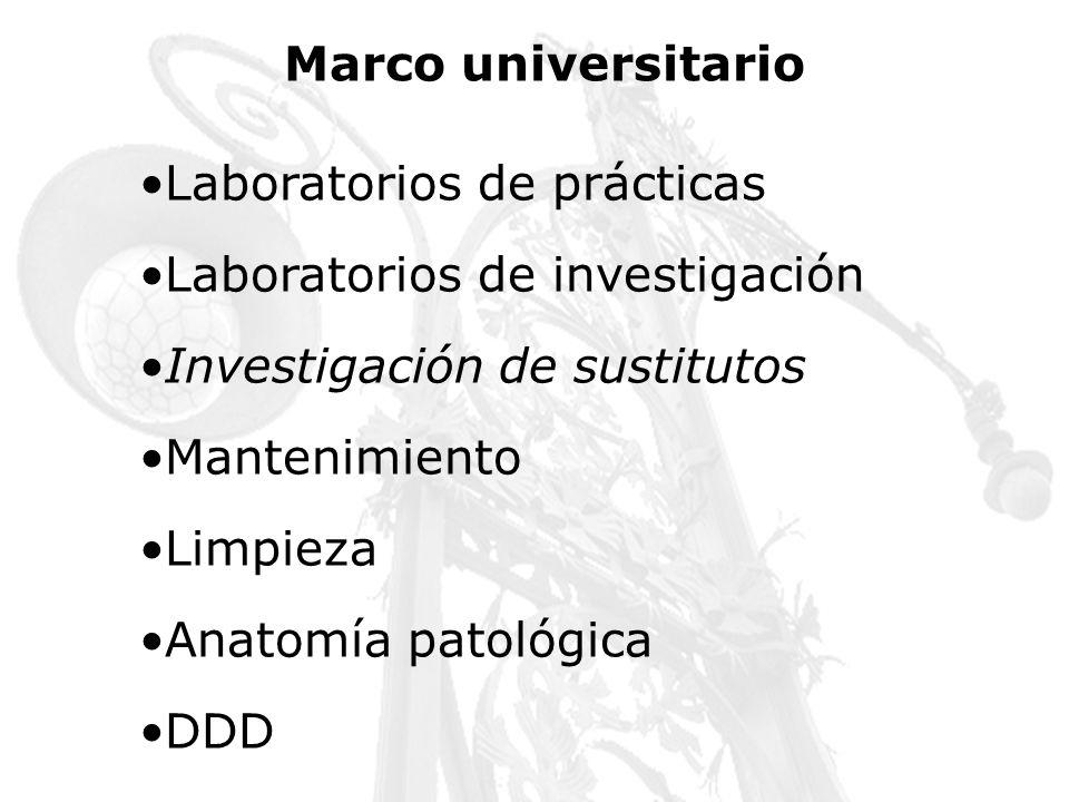 Marco universitario Laboratorios de prácticas. Laboratorios de investigación. Investigación de sustitutos.