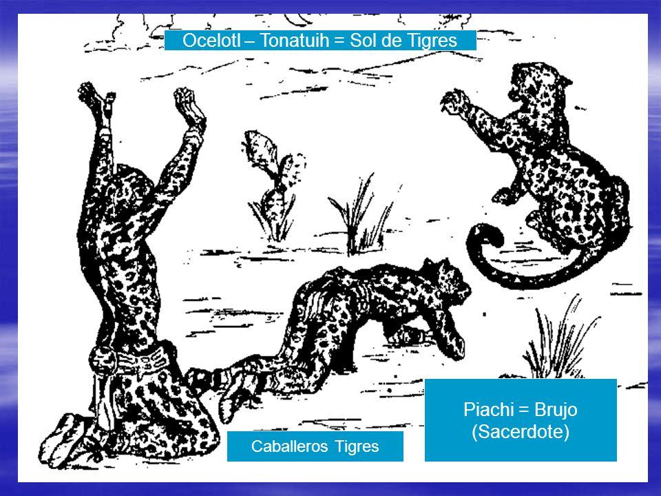 Ocelotl – Tonatuih = Sol de Tigres