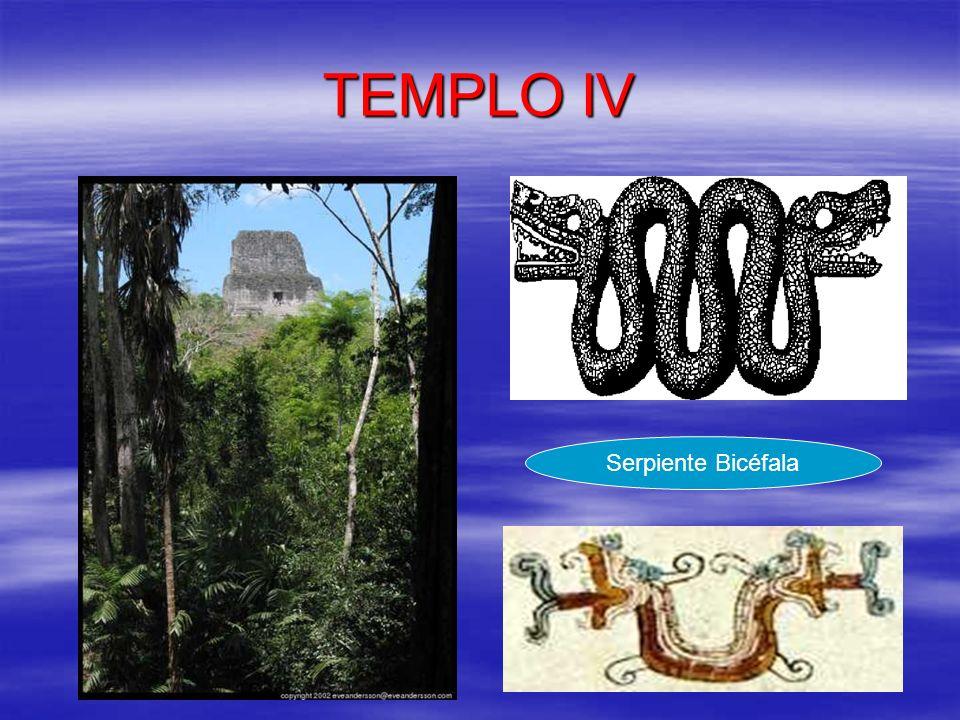 TEMPLO IV Serpiente Bicéfala