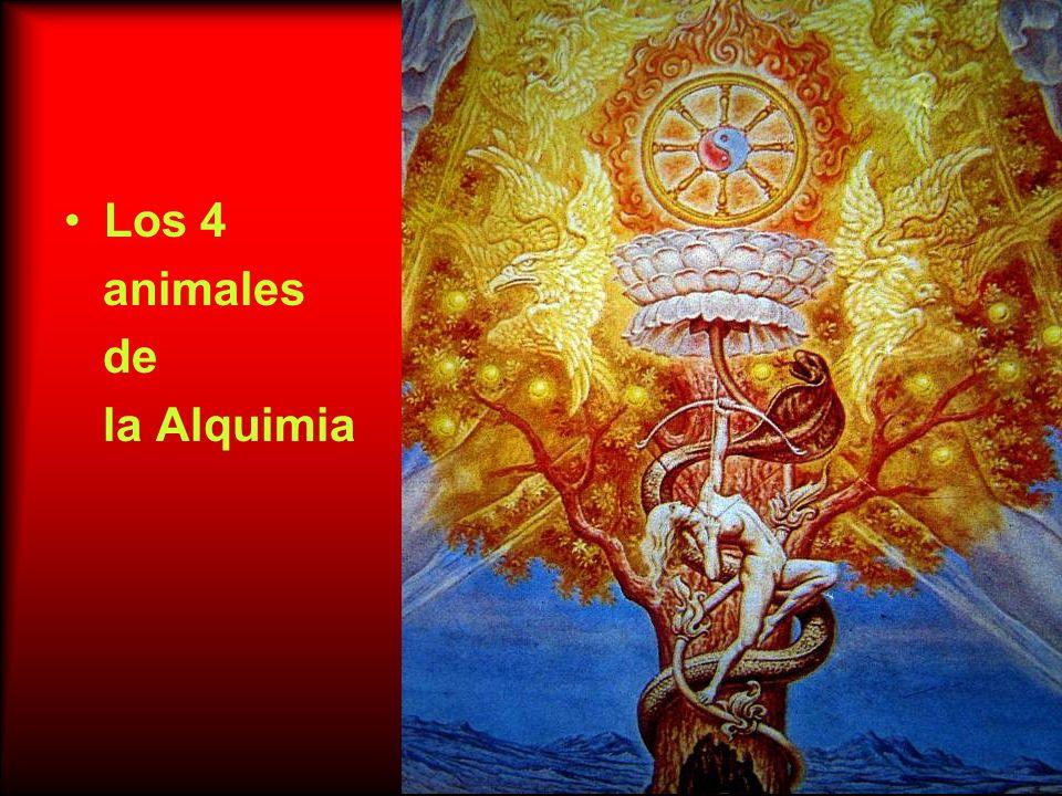 Los 4 animales de la Alquimia