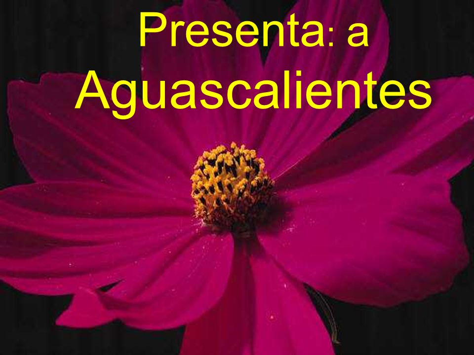 Presenta: a Aguascalientes