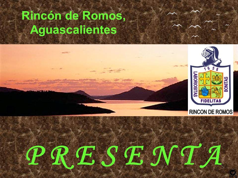 Rincón de Romos, Aguascalientes