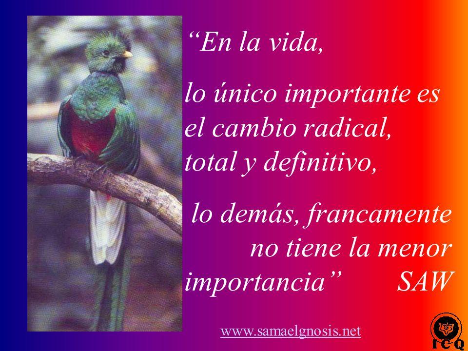 lo único importante es el cambio radical, total y definitivo,