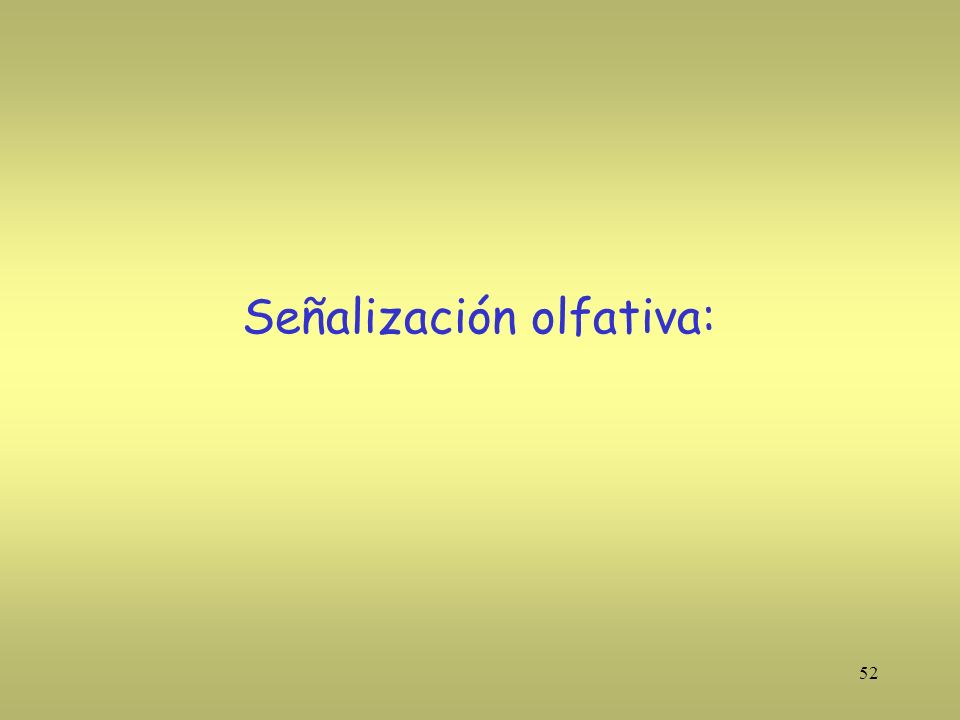 Señalización olfativa: