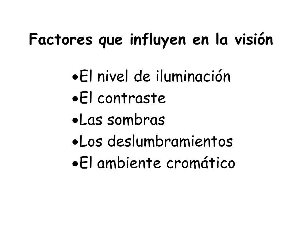 Factores que influyen en la visión