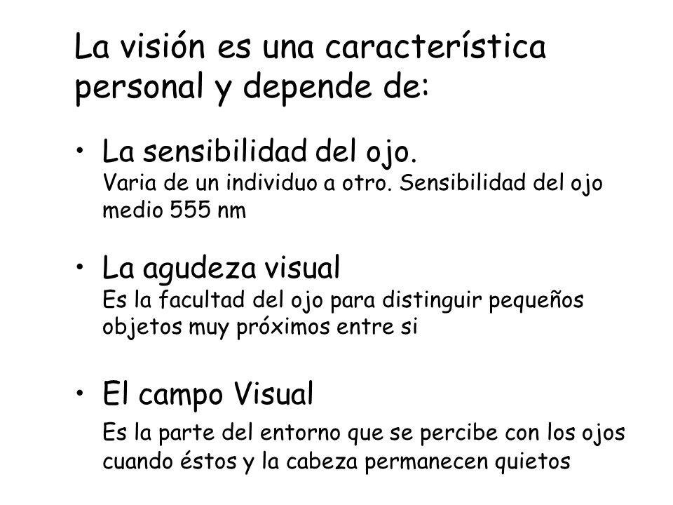 La visión es una característica personal y depende de: