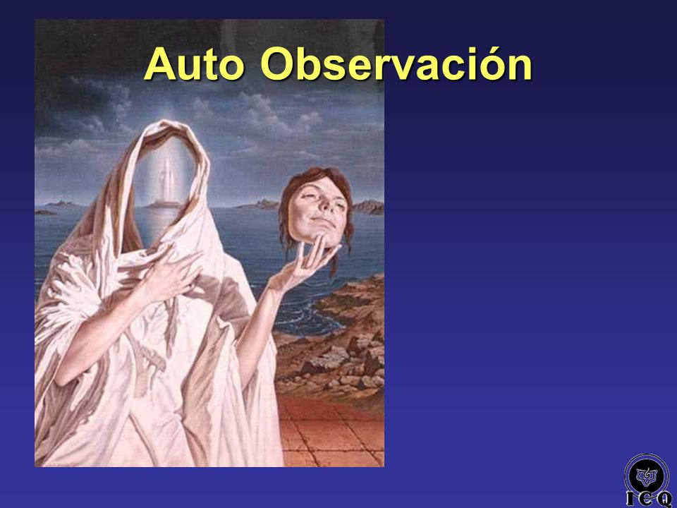 Auto Observación