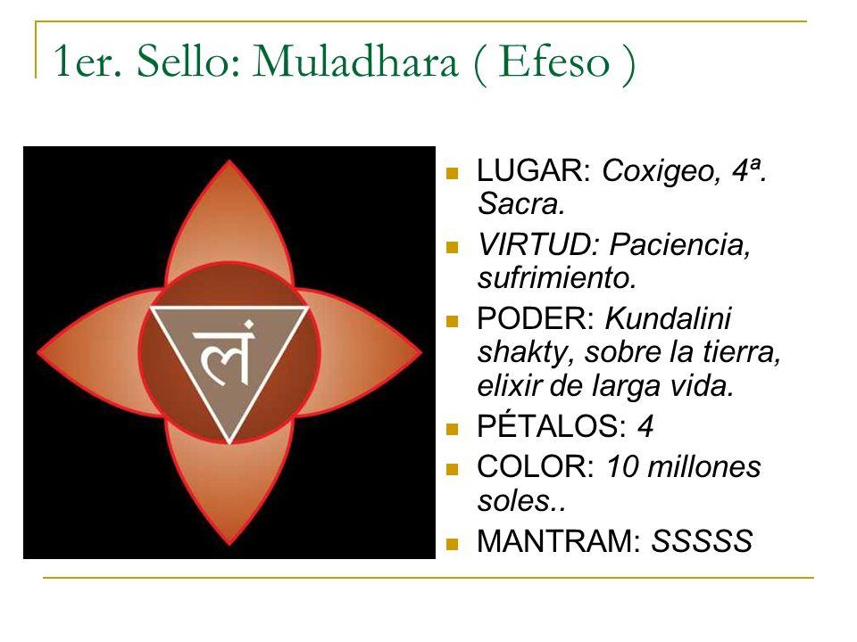 1er. Sello: Muladhara ( Efeso )