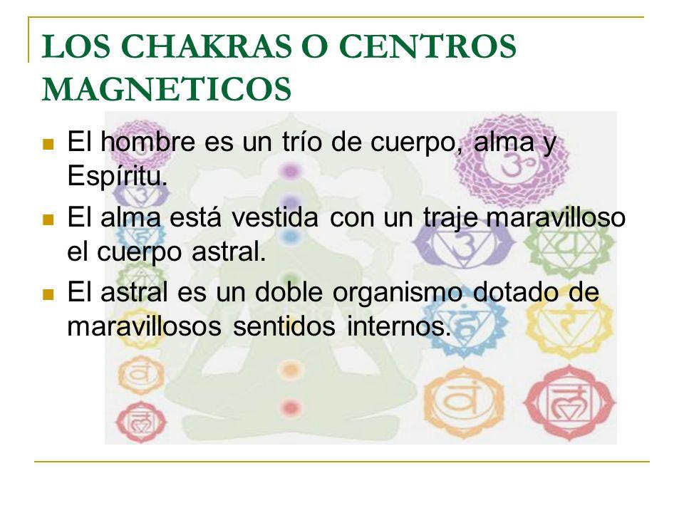 LOS CHAKRAS O CENTROS MAGNETICOS