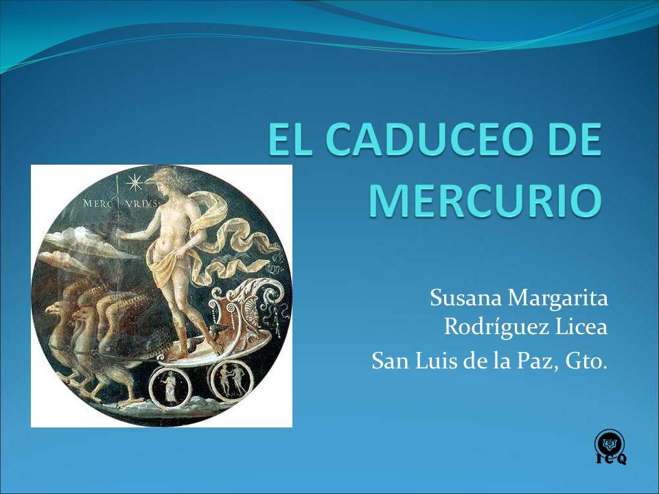 Susana Margarita Rodríguez Licea San Luis de la Paz, Gto.