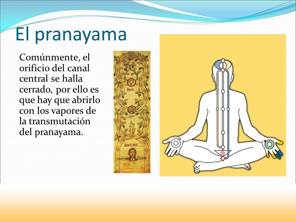 El pranayama
