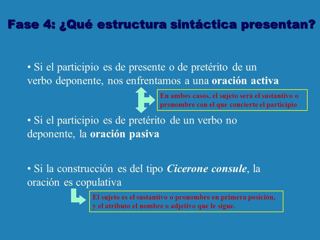 Fase 4: ¿Qué estructura sintáctica presentan