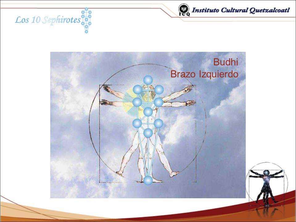Budhi Brazo Izquierdo