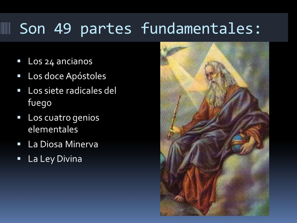 Son 49 partes fundamentales: